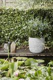Zahradní květináč ROW 270